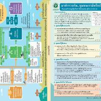 แผ่นพับ แนวทางการสร้างวัคซีนใจ.pdf